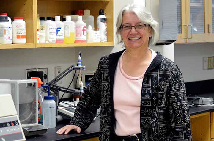 Faculty Holly L Boettger Tong in lab